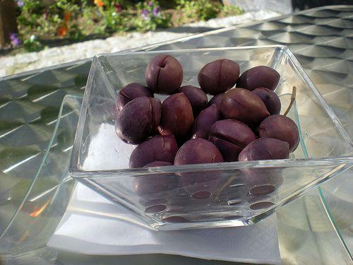 5368953733 3d270691f1 cocinando entre olivos for Cocinando entre olivos