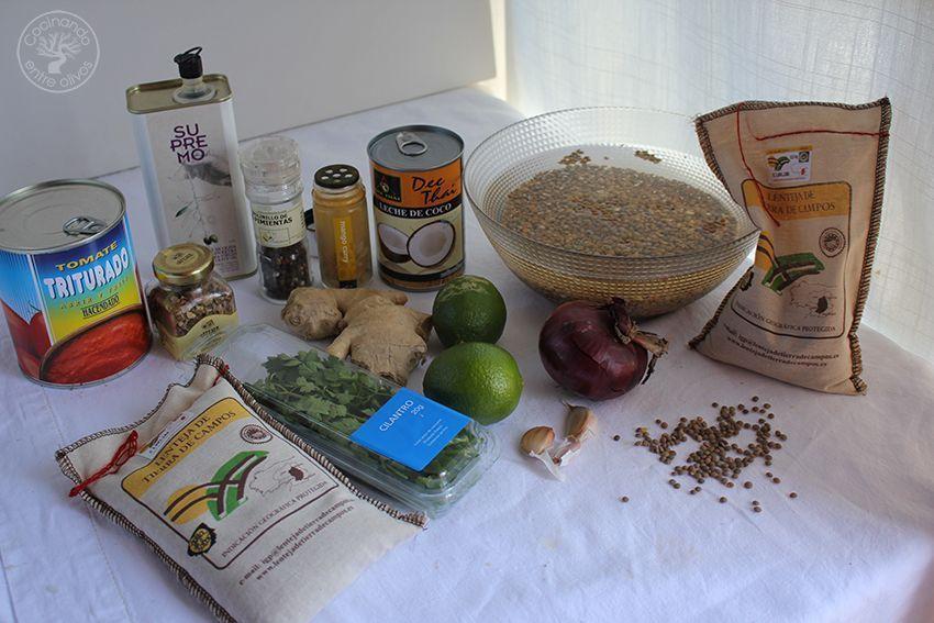 Lentejas Tierra de Campos con curry y leche de coco (1)