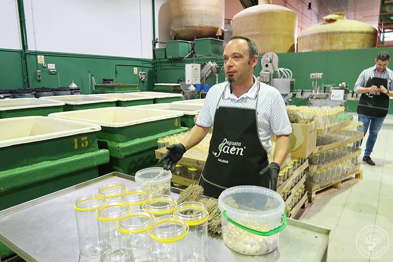 Hummus de Aceitunas verdes www.cocinandoentreolivos.com (3)