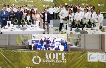 Aove Blogger España 2018 (15)
